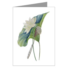 American Lotus Note Cards