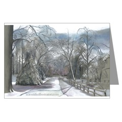 Snowy Street in Winter Greeting Cards