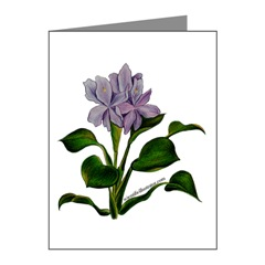 Water Hyacinth Note Cards